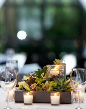 Tendencia en bodas decoraciones con suculentas for Decoracion con plantas suculentas