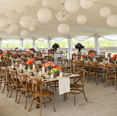 sillas cross para bodas y eventos la caleñita