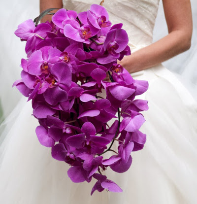 color de moda para bodas 2014 la caleñita colombia cali